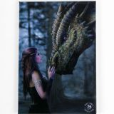 Anne Stokes Once Upon A Time - fridge magnet
